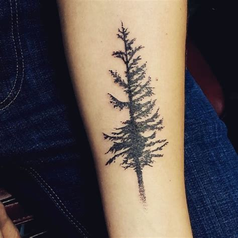 oregon tattoos douglas fir tree but i would add roots to the
