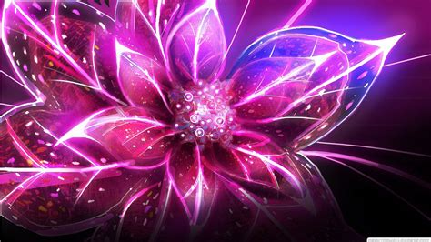 cool flower backgrounds 30 pink abstract hd wallpapers