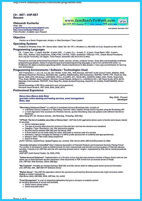 developer resume template how professional database developer resume must be written