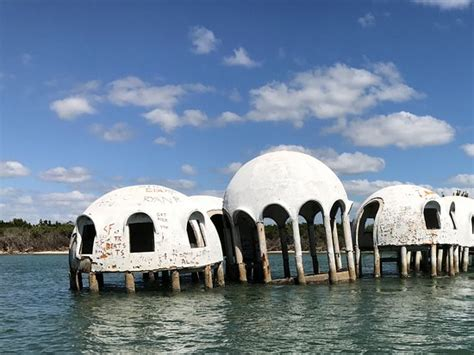 marco island boat rental reviews mushroom house picture of southwest florida boat club