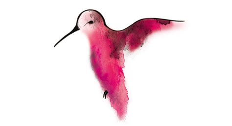 temporary tattoo hummingbird in watercolor temporary