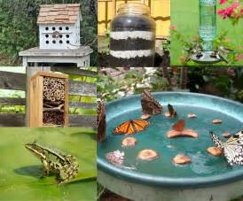 10 cool ways to attract endless wildlife to your backyard