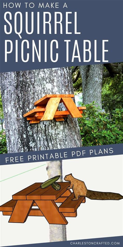 squirrel picnic table   plans