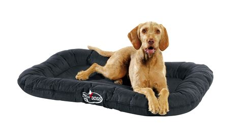 non chewable dog bed waterproof non chewable dog bed noten animals dog beds and