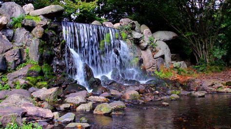 gif wallpaper of nature water perfect loop gif by living stills find share on