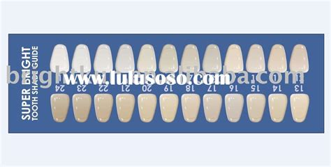 tooth color chart 10 best images of dental shade guide chart tooth color