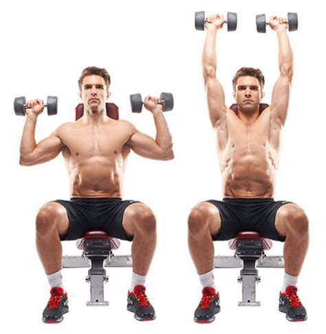seated chest press vs bench press the 30 best shoulder exercises of all time