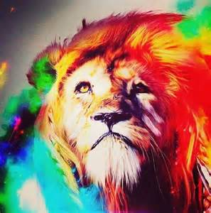 what color are lions 56 best images about on