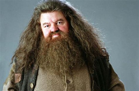 harry potter a cinematic gallery 80 original images to color and inspire books hagrid sur topsy one
