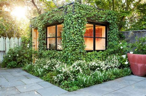 Patio Shed Vine Covered Walls Let You Enjoy The Outdoors For The Best