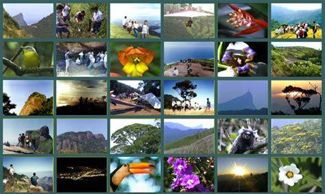 galeria de imagenes html responsive baixar filmes musica criando album de fotos com