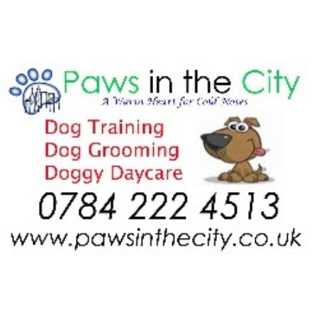 its dog daycare kennel grooming software paws in the city now its the dogs west molesey surrey kt8 2na