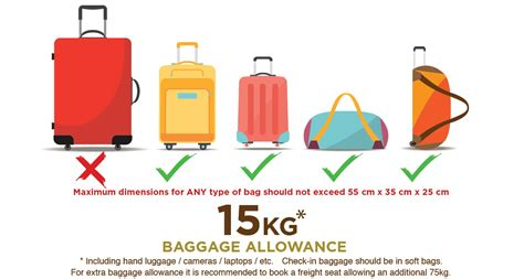 united baggage allowance domestic 100 baggage allowance united 100 united airlines