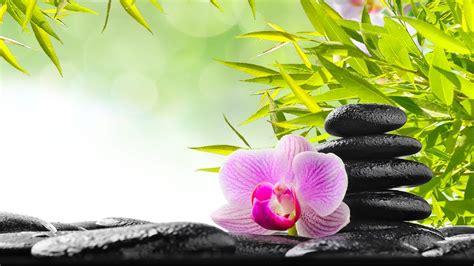 zen meditation  relaxing    stress