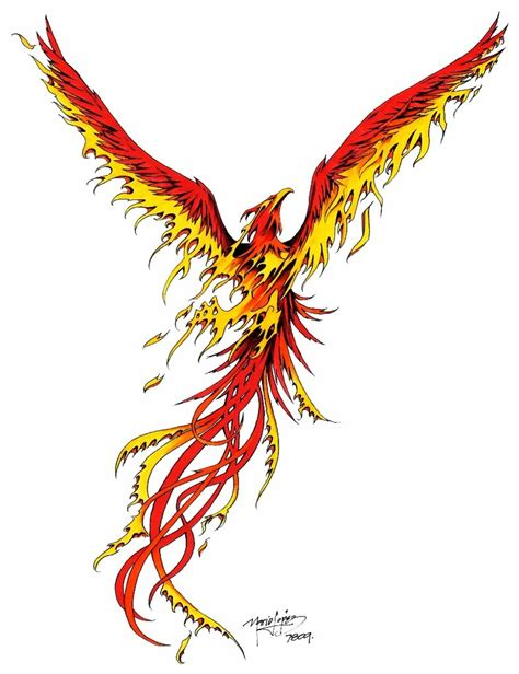 phoenix tattoo design designs 02 the collectioner