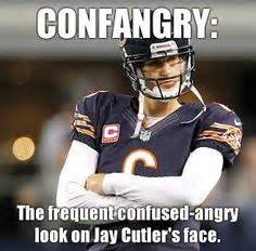 Bears Suck Meme - 1000 images about go pack go on pinterest jay cutler