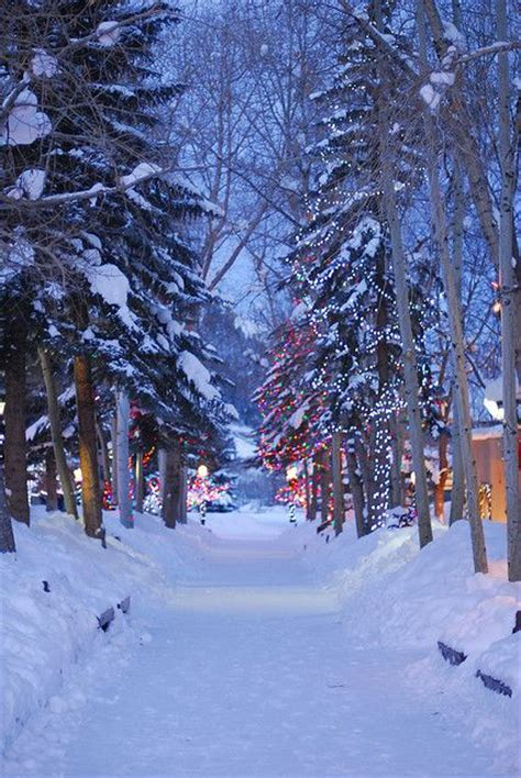 christmas aspen mall path nature s beauty pinterest