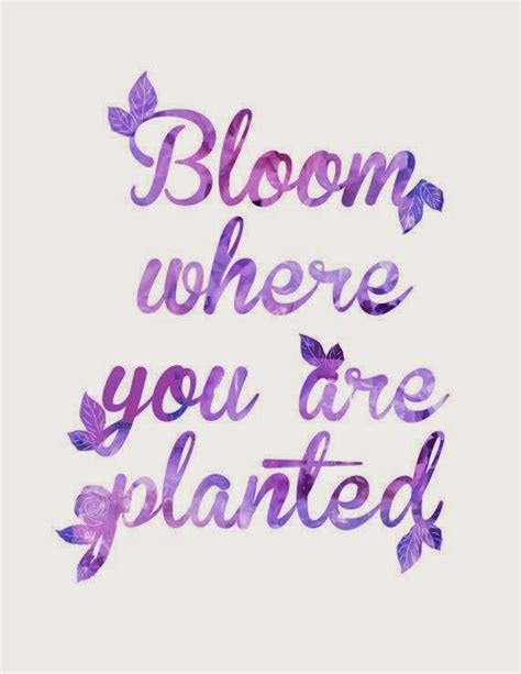 color purple quotes agnes pin by kerriemburke style on type a