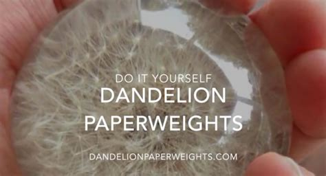 How To Make A Glass Paper Weight - how to make a dandelion paperweight