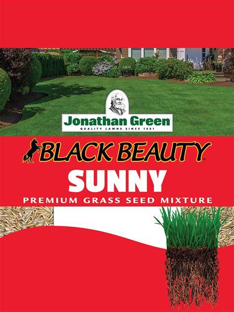 jonathan green black beauty full sun  lb