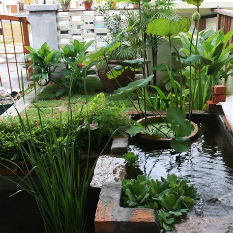 Karpet Unik Rumput Sintetis rumahku syurgaku landskap air pancut di rumah