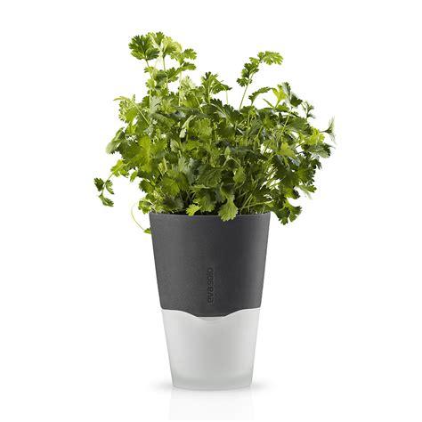 herb pot buy eva solo herb pot 11cm dark grey amara