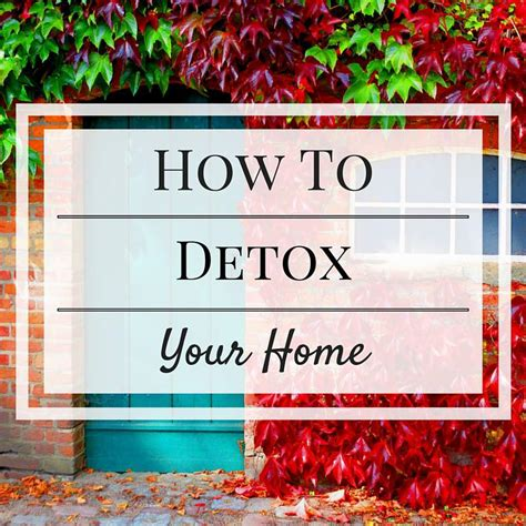 How To Detox Your At Home by How To Detox Your Home The Best Organic Lifestyle