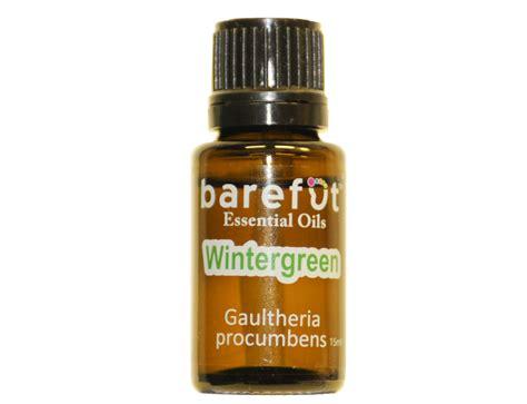 Lulur Identic 100 Original Aroma Cokelat wintergreen essential oils aromatherapy oils