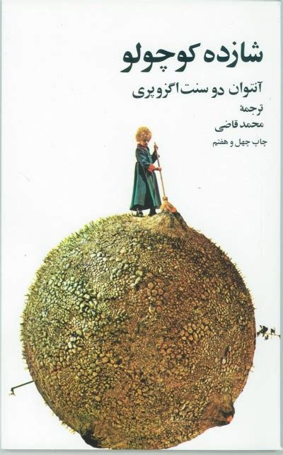 Little Prince The Farsi Persian Paperback