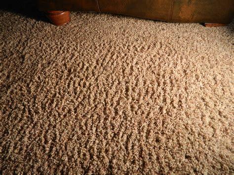 pixie picnic rugs corn carpet carpet vidalondon