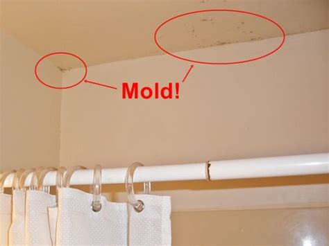 Cleaning Mildew From Bathroom Ceiling by 17 Best Ideas About Mold In Bathroom On