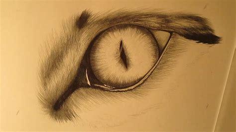 imagenes de ojos realistas para dibujar c 243 mo dibujar el ojo de un gato a l 225 piz paso a paso youtube