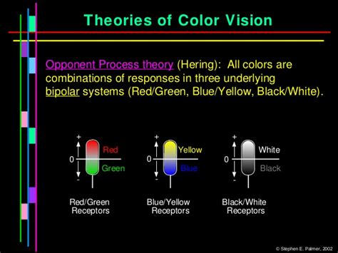 opponent process theory of color colour vision ppt by dr mazhar