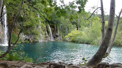 imagenes en 3d de paisajes con movimiento 9833 cascadas y movimiento del agua raw paisajes