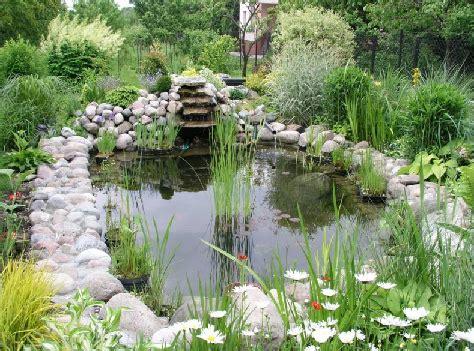 backyard fishpond philippines garden design