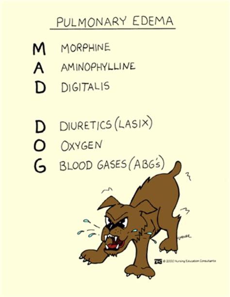 pulmonary edema in dogs pulmonary edema mnemonic mad nursey stuff