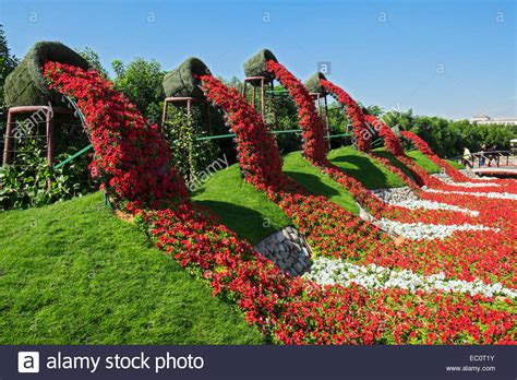 view  flower displays  landscaping  miracle garden