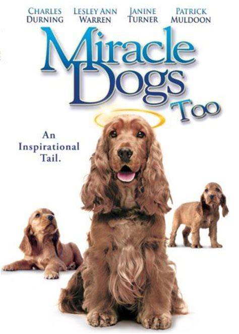 Miracle Dogs Free Miracle Dogs 2006 On Collectorz