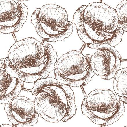 vintage pattern sketch sketch poppy vector vintage seamless pattern stock vector