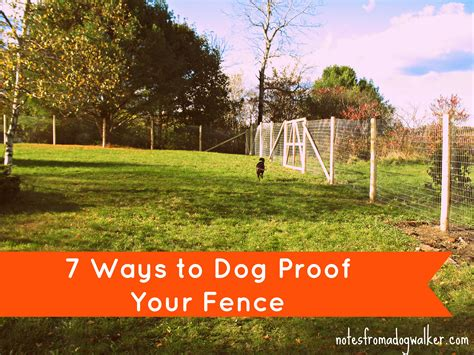 how to keep dog from jumping fence peace in the yard 7 ways to dog proof your fence notes