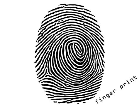 fingerprint template free fingerprint vector free vector