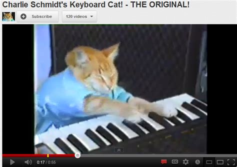 Keyboard Cat Meme - marketing with memes batesmeron