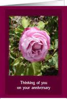 Wedding Anniversary Card For Widow by In Remembrance Of Spouse Wedding Anniversary Cards For