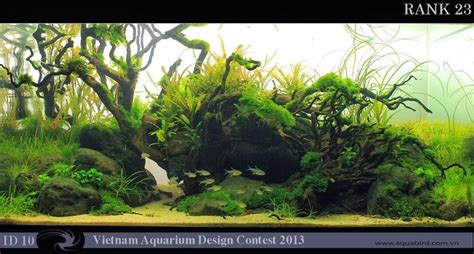 aquascaping with driftwood 601 best images about aquascape on pinterest underwater dutch and live plants