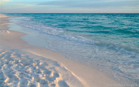 beaches in florida clearwater florida topcools