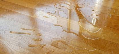 How to Waterproof a Wood Floor   DoItYourself.com
