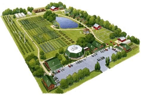 Living Kitchen Farm is only a dream at present ... 1 Acre Horse Farm Layout