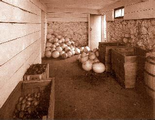 Root Cellar In Basement how to create a root cellar for food storage the organic