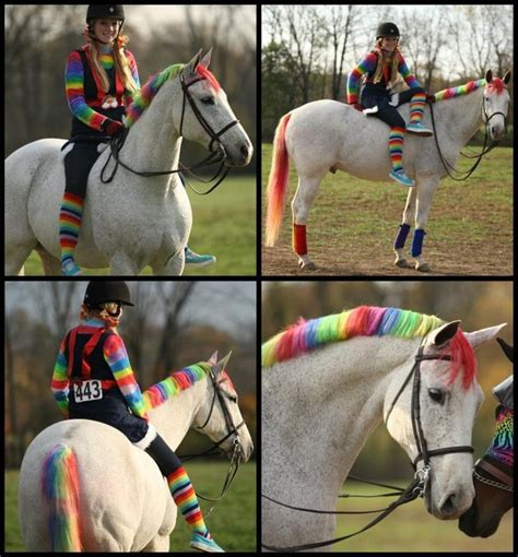 Links To Stalk 13 by 17 Best Ideas About Costumes On Horses