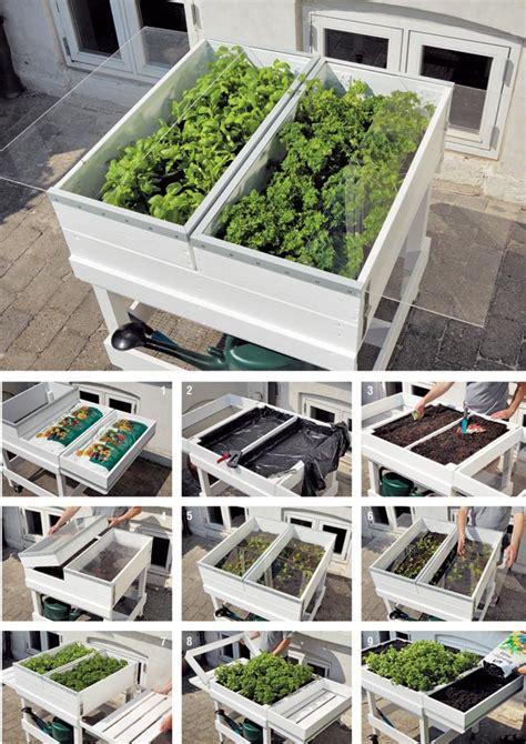 orto in terrazzo fai da te orto in cassetta come costruire il banchetto fai da te